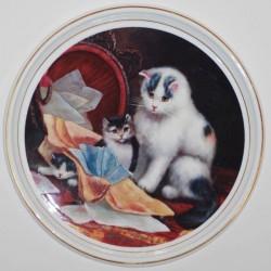 Patera Koty