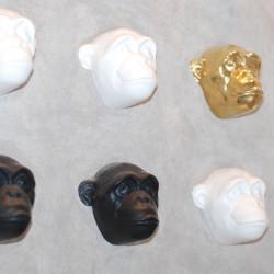Małpka -głowa (kolory)